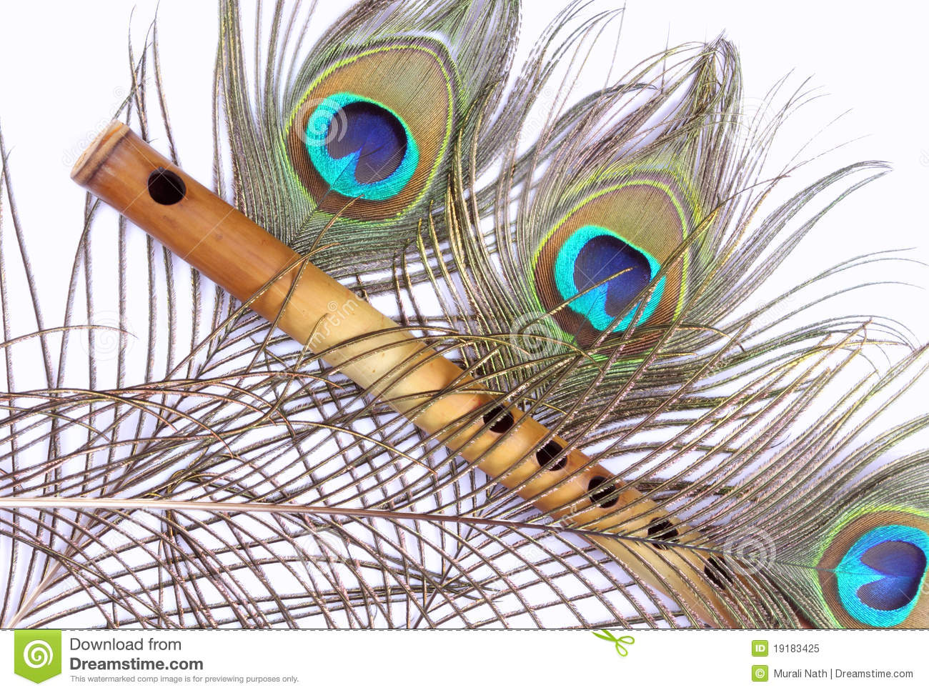 Bamboo flute, peacock feather