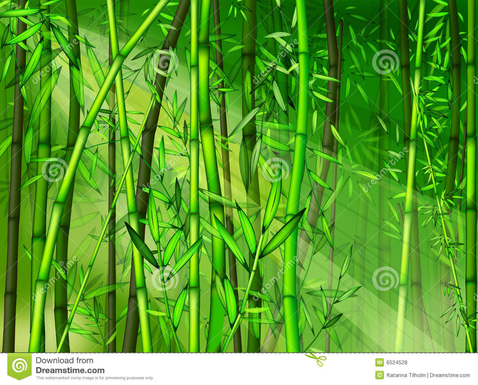 Bamboo Forest Stock Illustration Illustration Of Nature