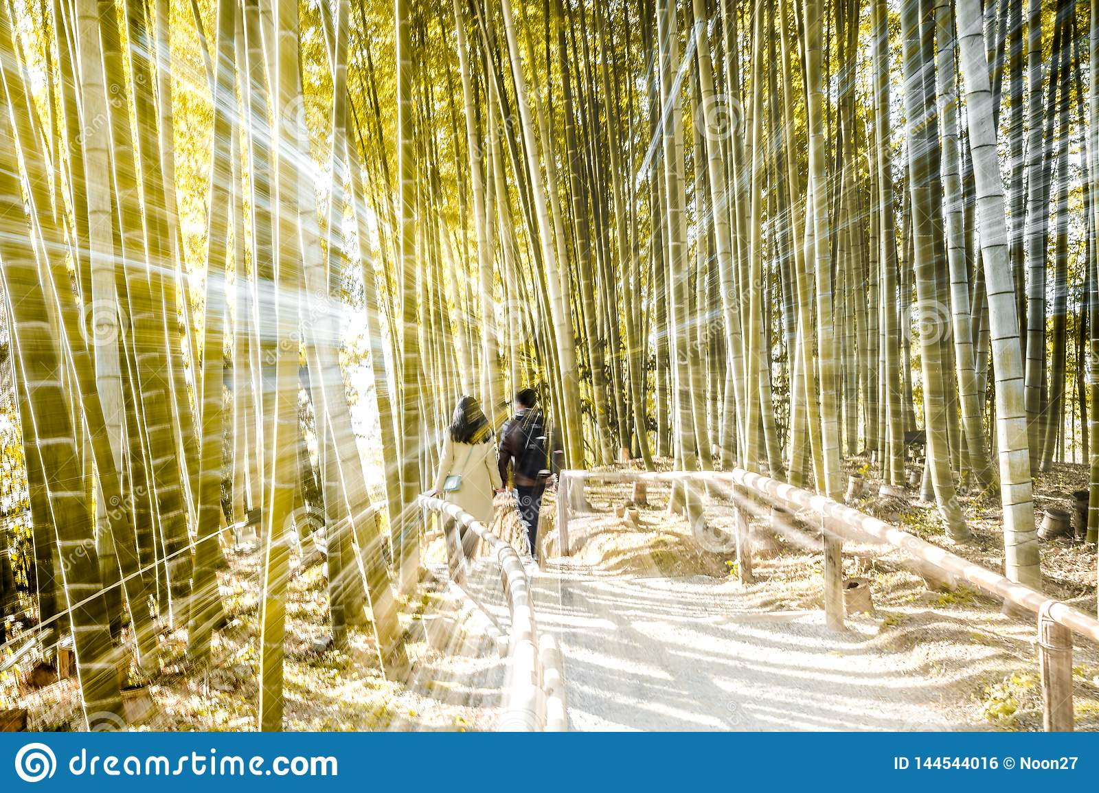 Bamboo Forest Effect