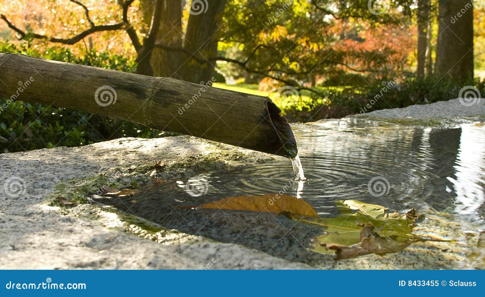 Bamboo Fountain in Autumn