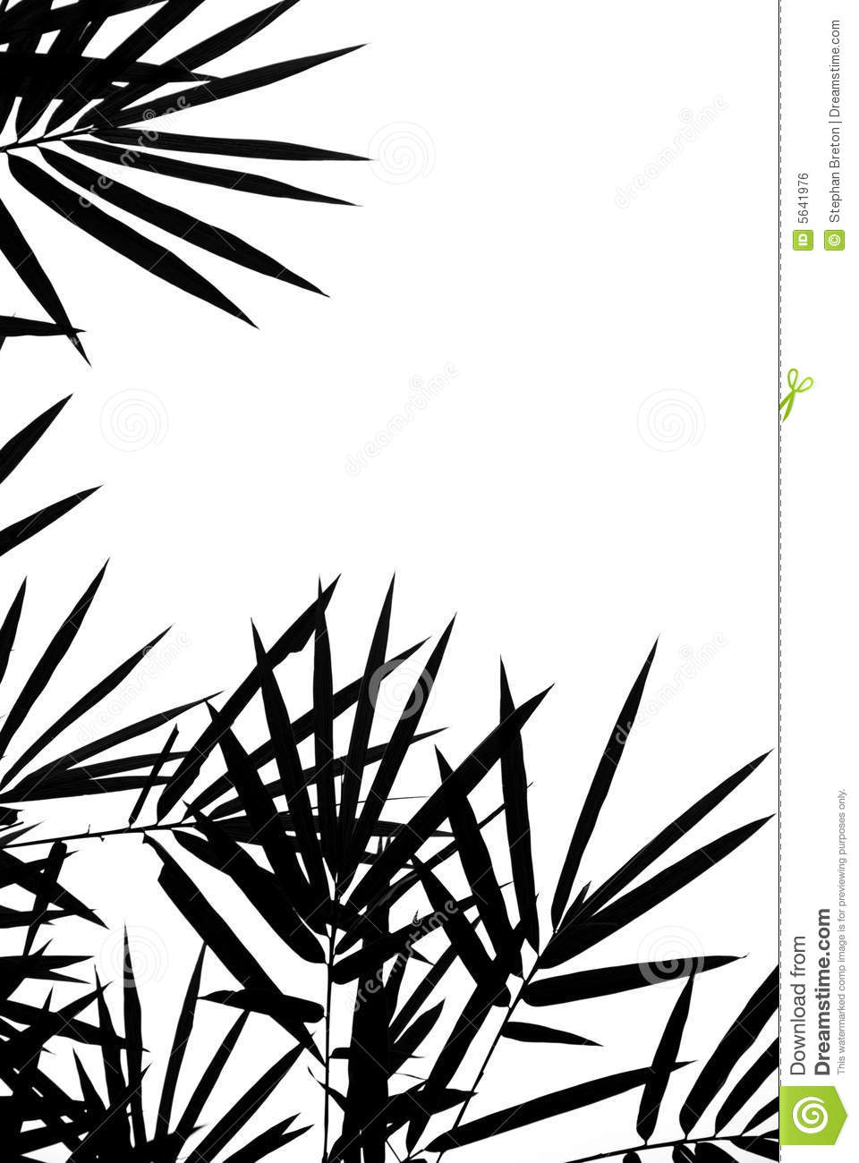bamboo leaves silhouette background royalty free stock image