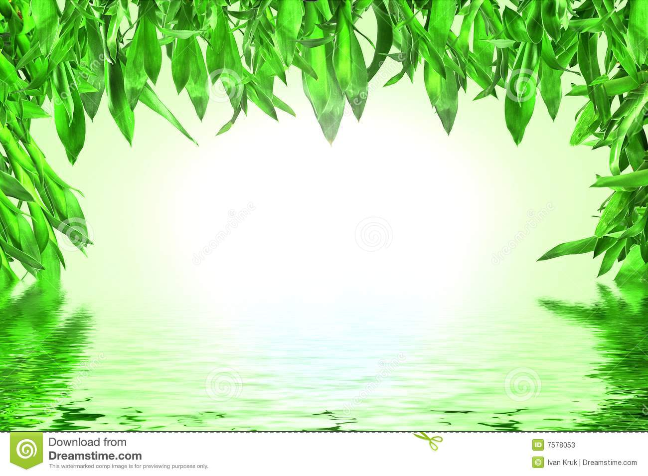 Bamboo leaves with water reflection