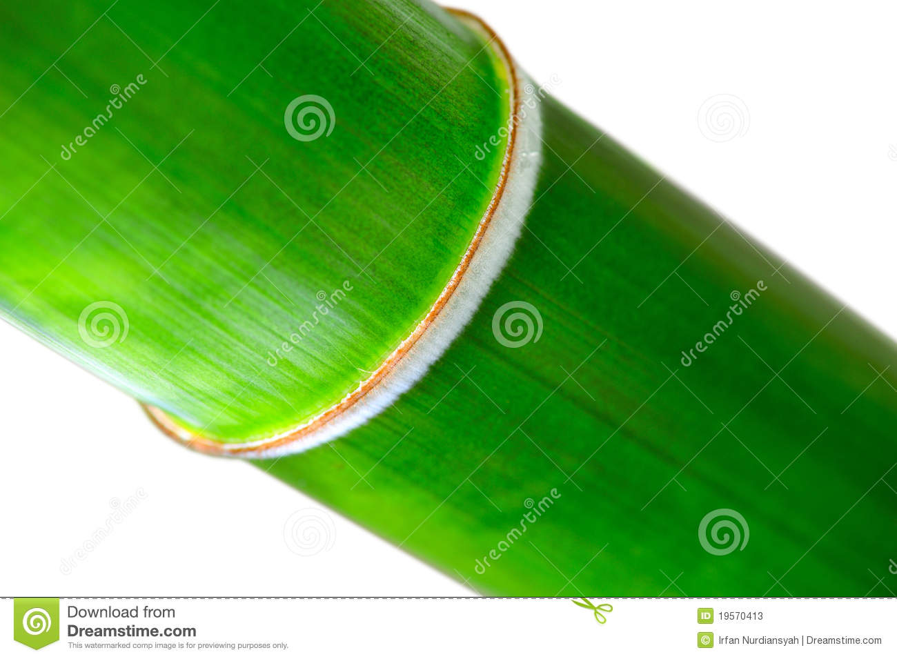 how to cut bamboo nodes