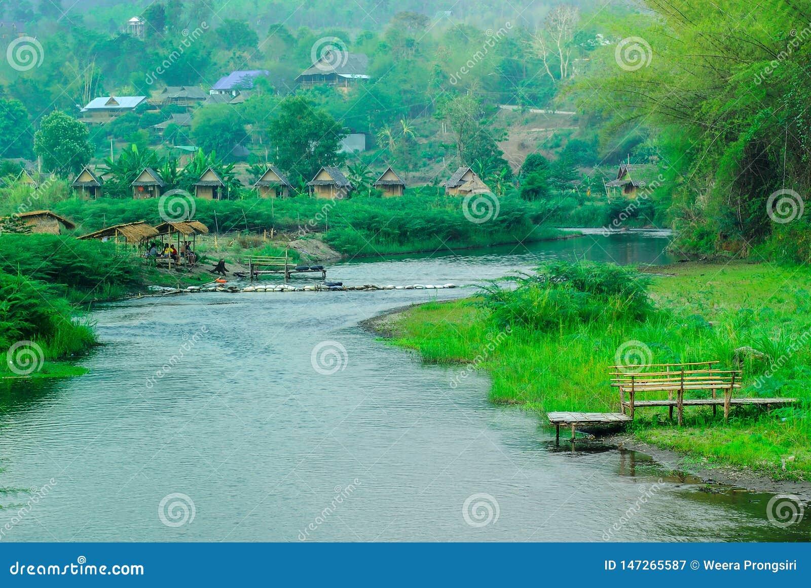 Bamboo - Plant, Lake, Summer, Water, Asia