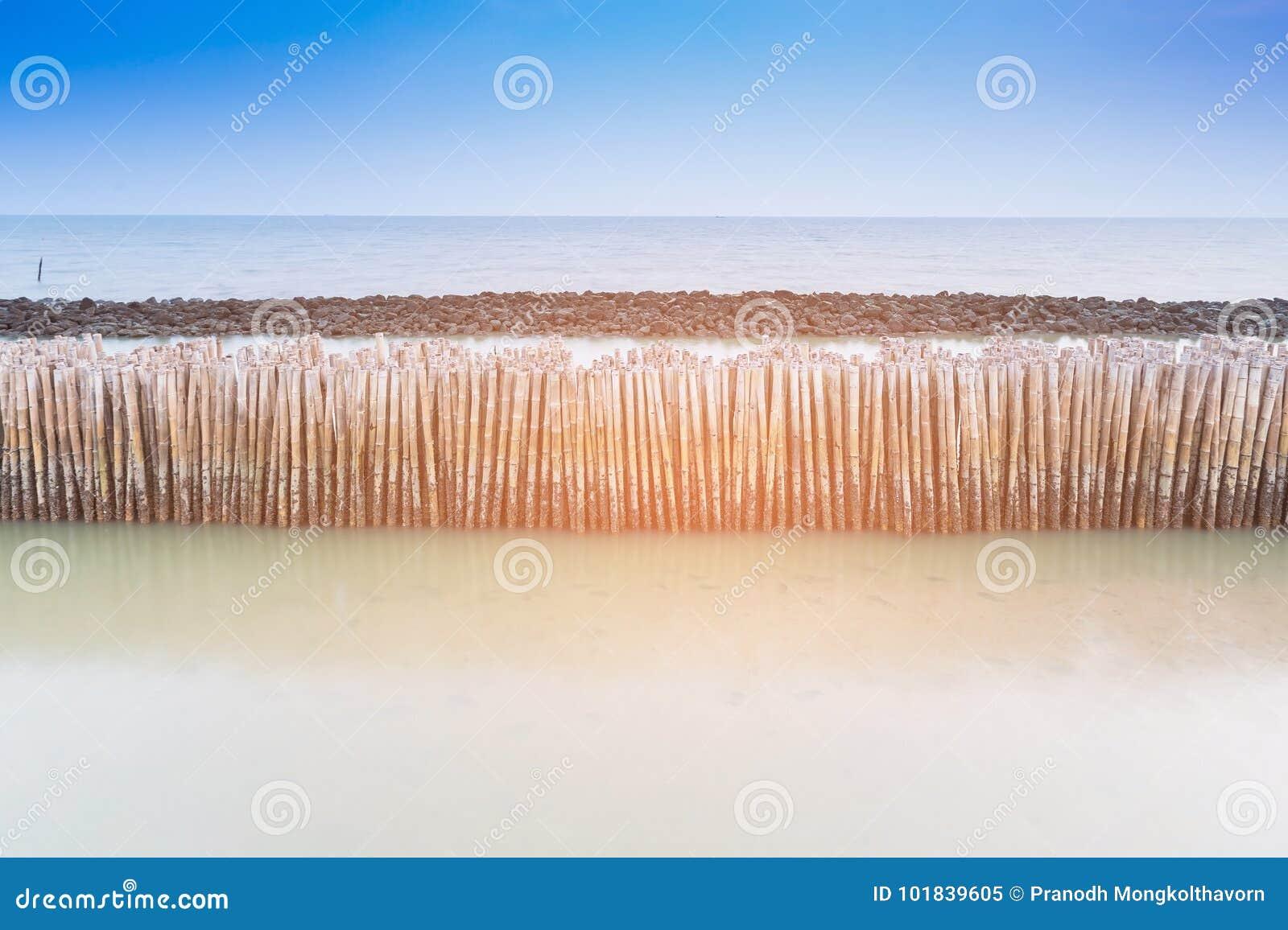 Bamboo seacoast wall barrier
