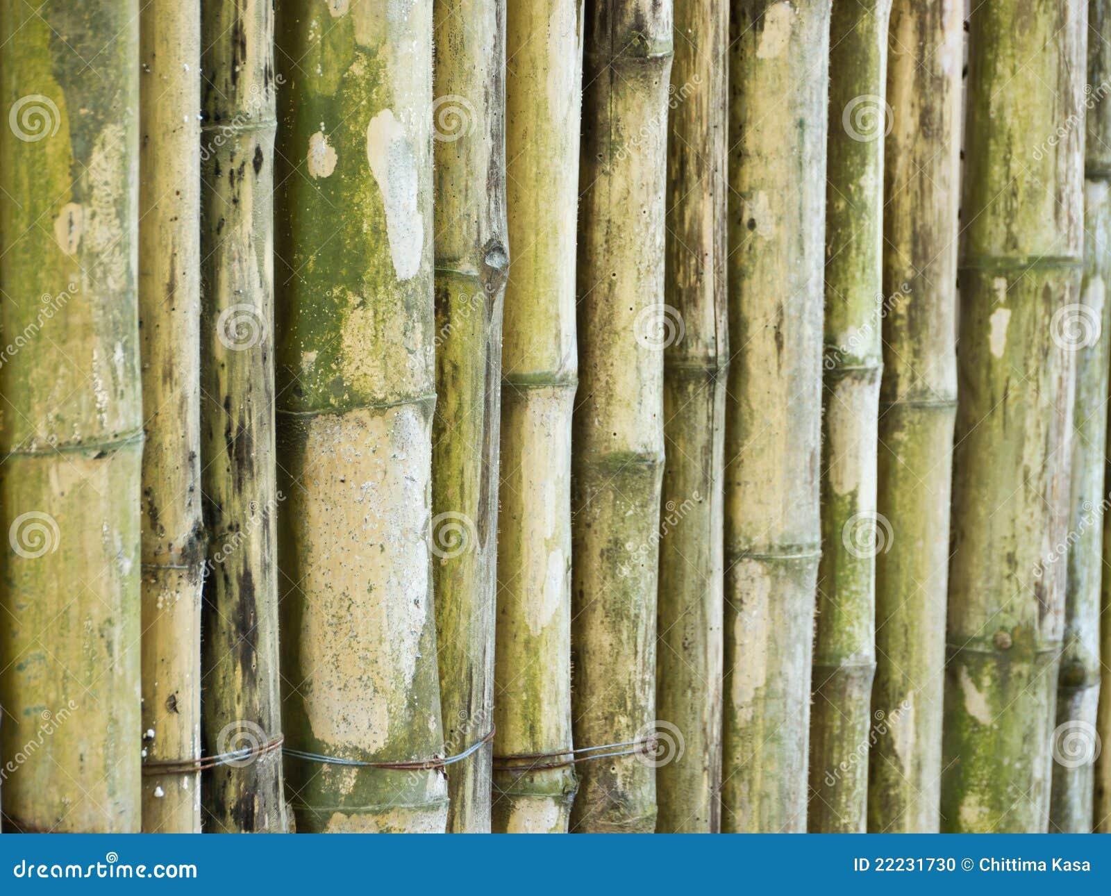 Bamboo Stcik People ~ Bamboo stick stock photo image