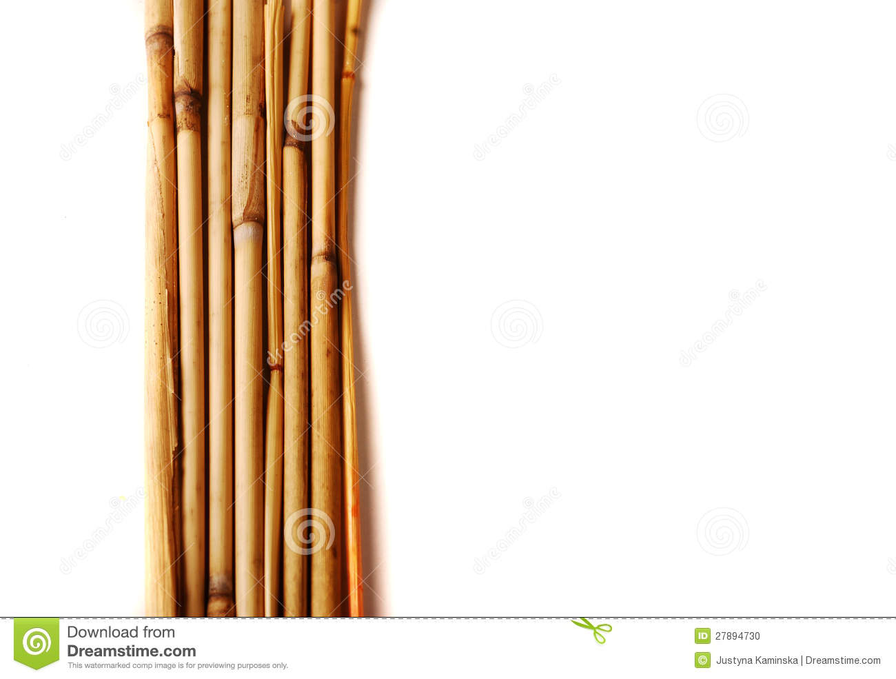 Bamboo Sticks Stock Photo Image Of Twig Bamboo Asia