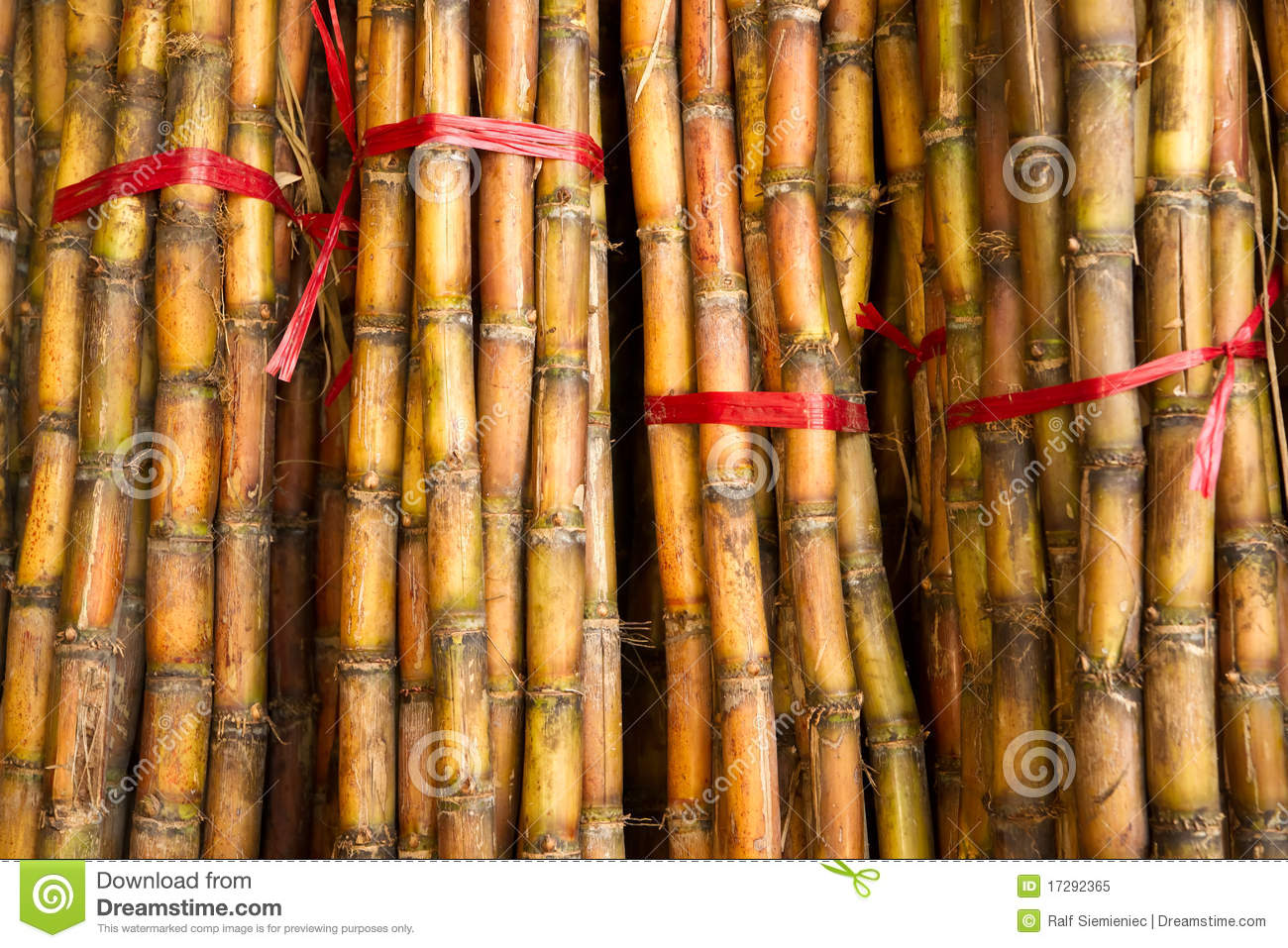 Bamboo Stcik People ~ Bamboo sticks for sale royalty free stock photo image