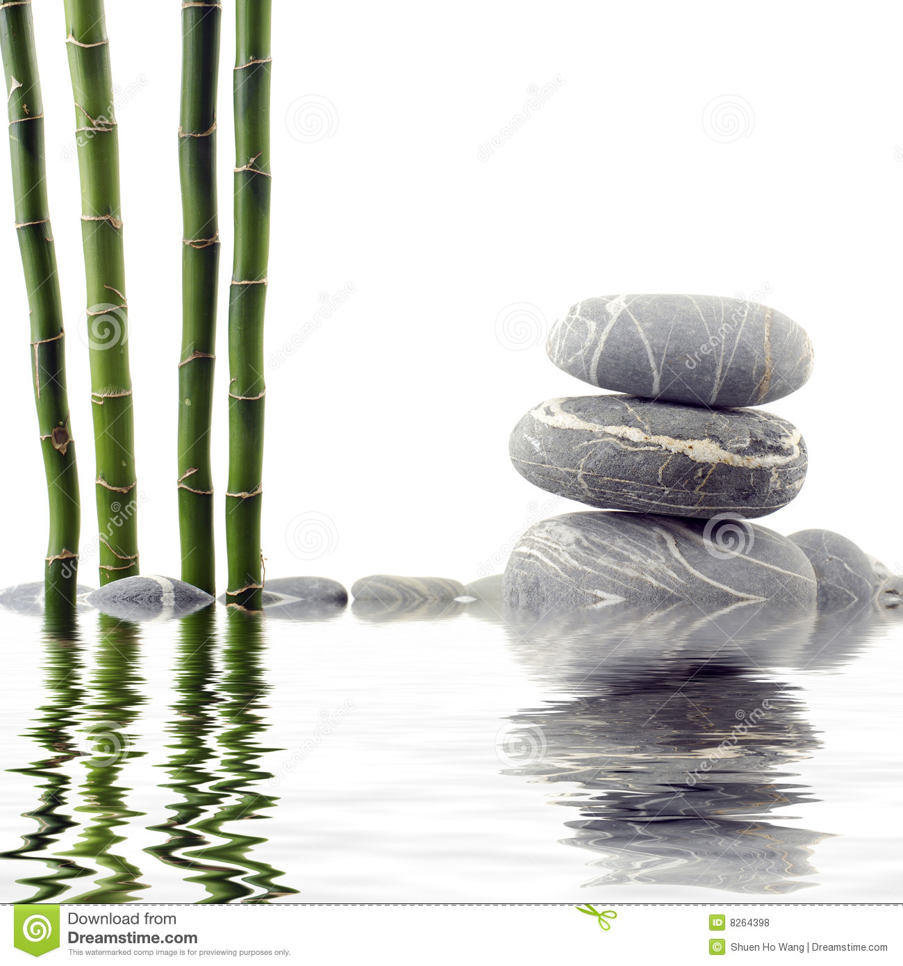 Bamboo and stone