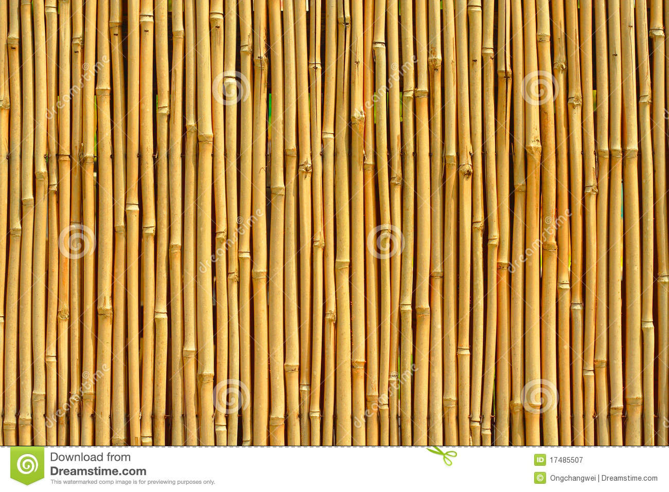 Bamboo Texture Royalty Free Stock Photography Image