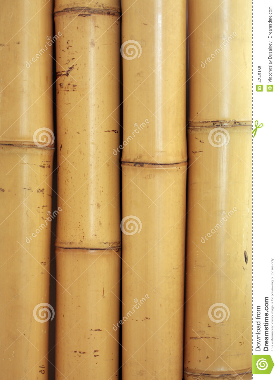 Bamboo Texture Stock Photo Image Of Traditional Stick