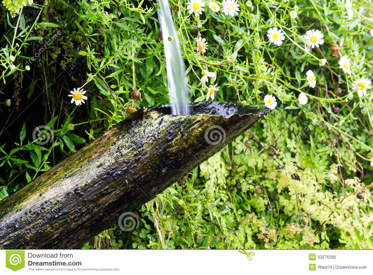Bamboo tube and flowing water in japanese garden stock for Water in japanese