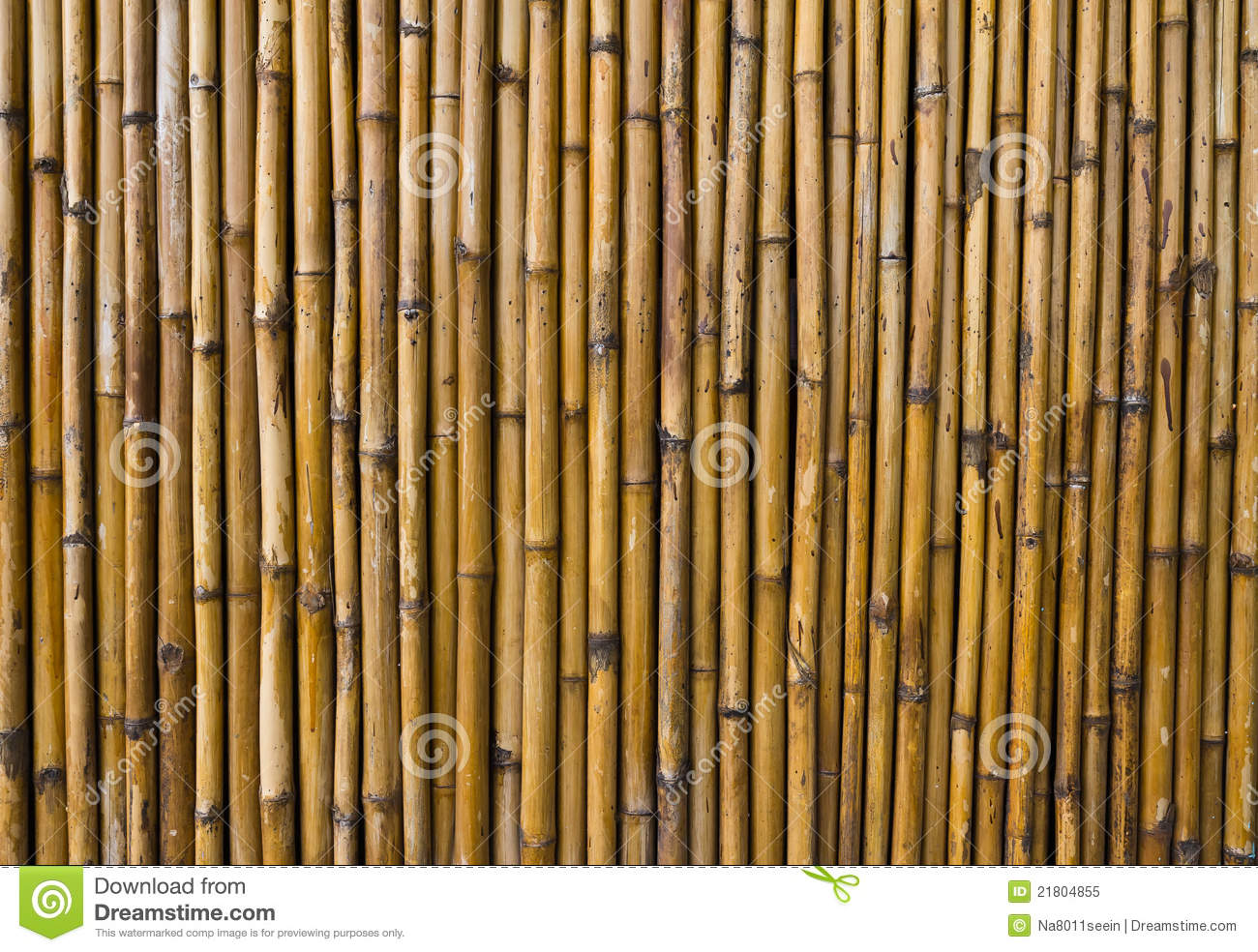 bamboo walls stock image image of tall plant abstract 21804855. Black Bedroom Furniture Sets. Home Design Ideas