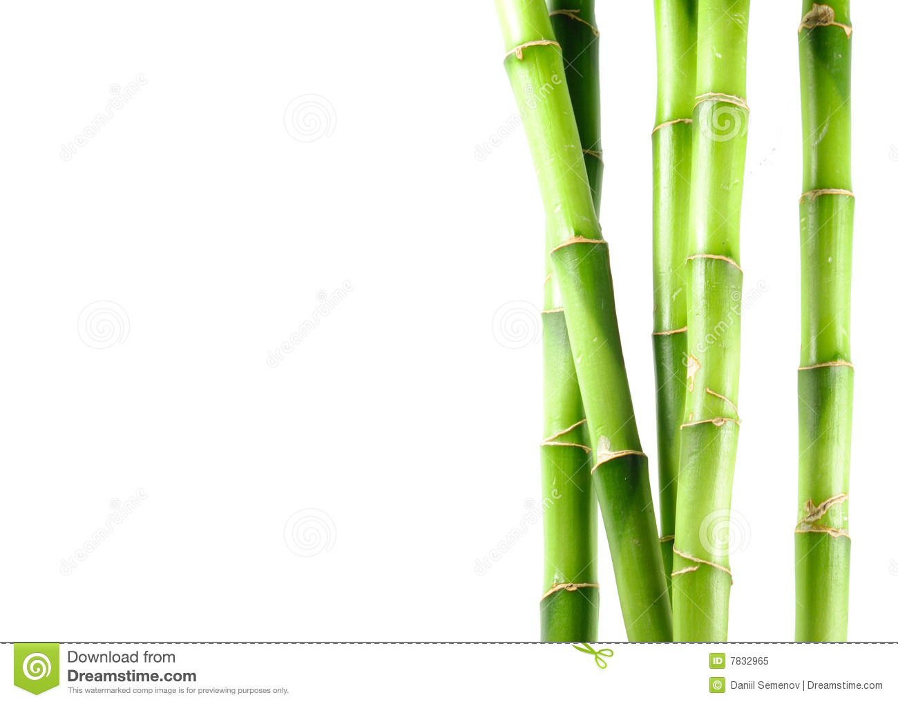 Bamboo On White Isolated Background Royalty Free Stock Photo - Image ...