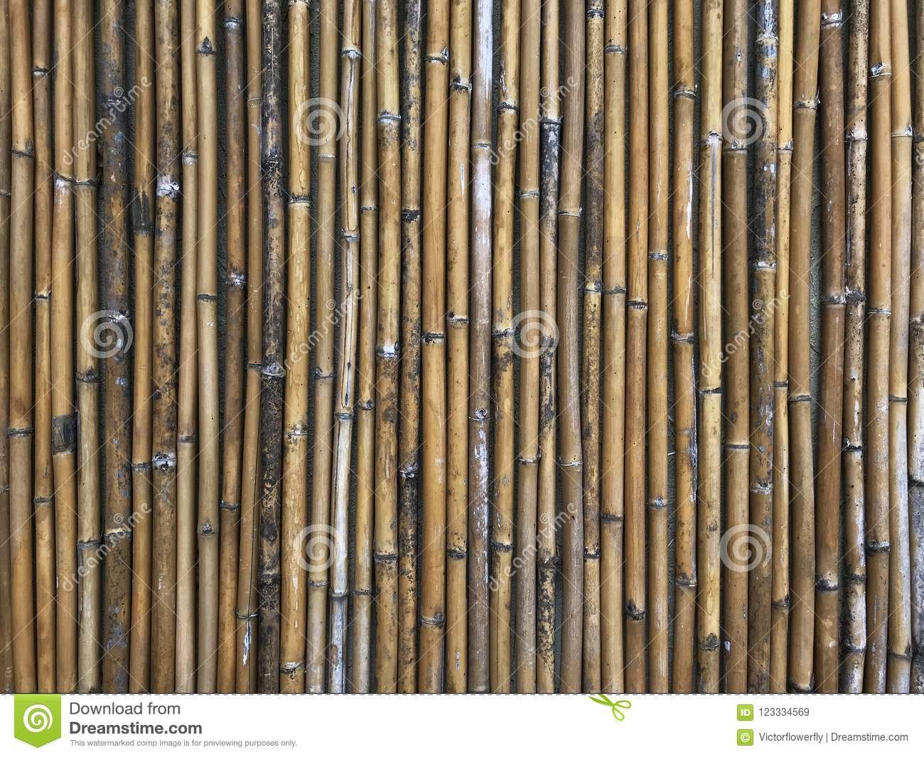 Bamboo wood material pattern background. Interior design concept good for backdrop, wallpaper