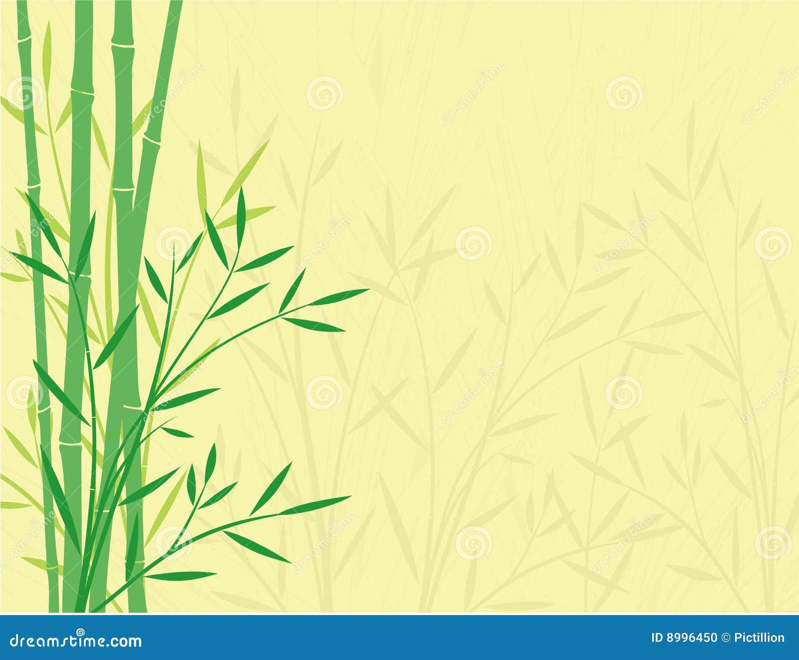 Bambou de fond