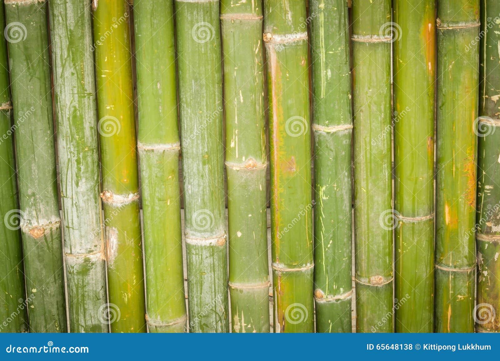 Bambou, fond en bambou
