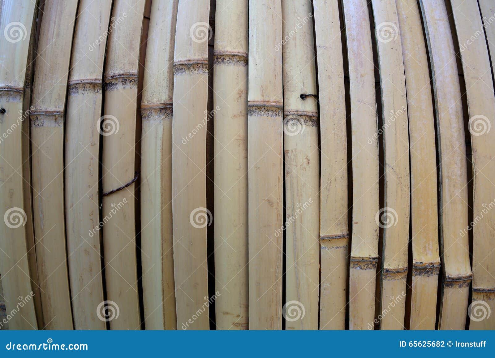 Bambou sec Texture