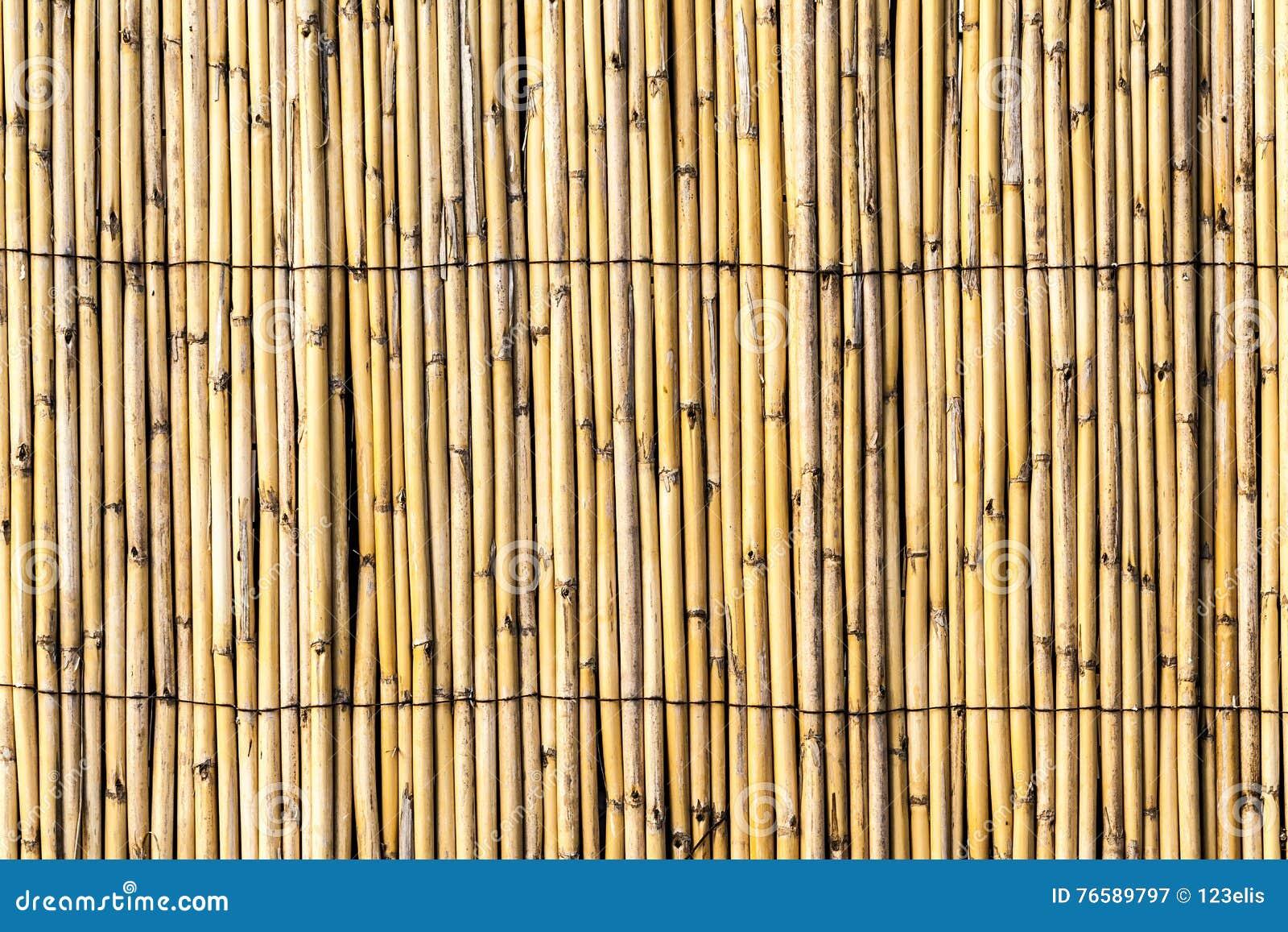 Bambu Zaun Texture Stockbild Bild Von Organisch Grunge 76589797