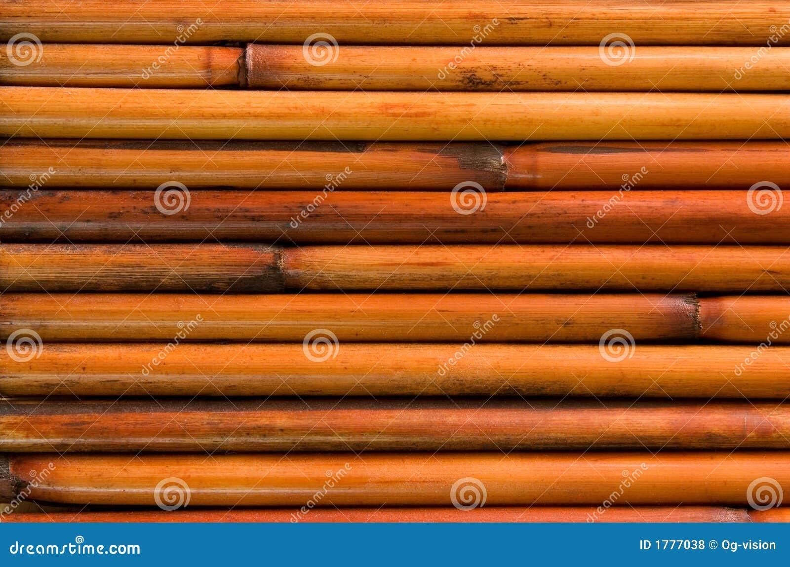 Bambus tło