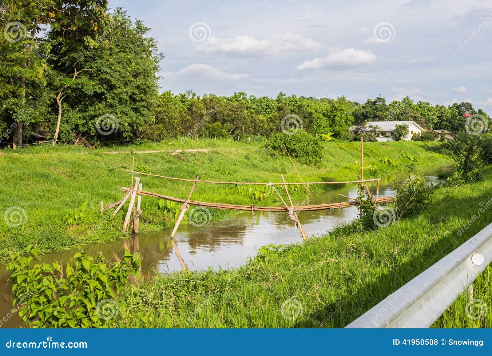Bambusa most w spokojnej rzece
