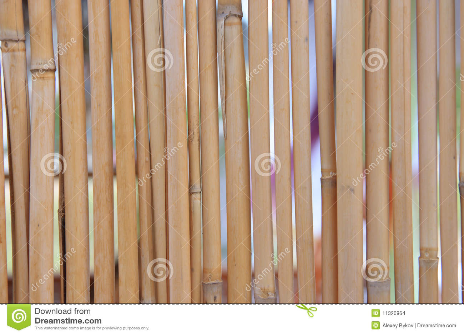 Bambushintergrund.
