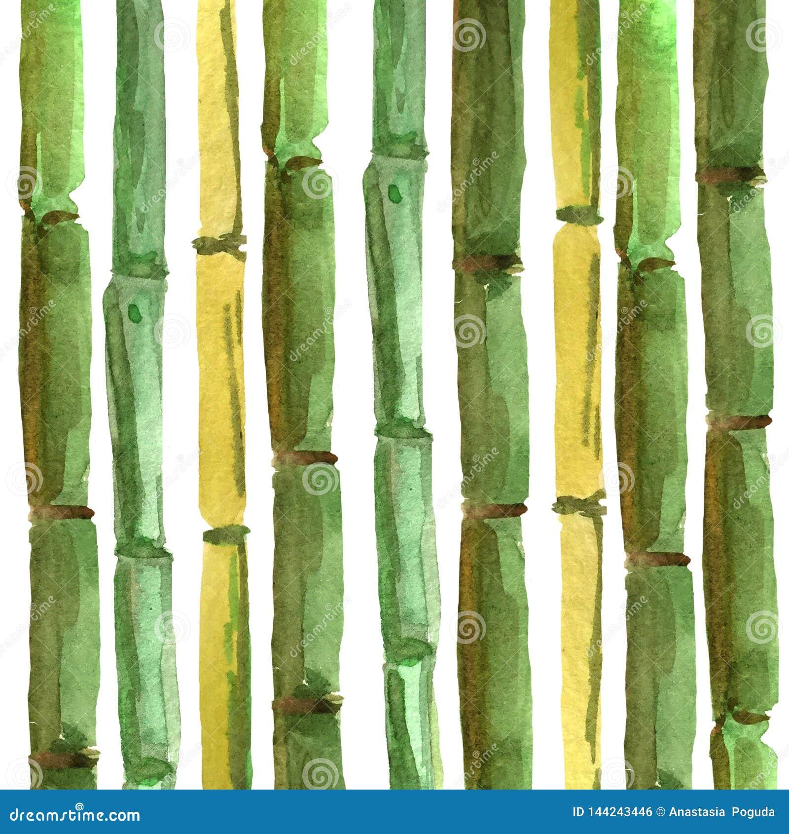 Bambusowej ręki rysunkowy tło dla najlepszy projekta