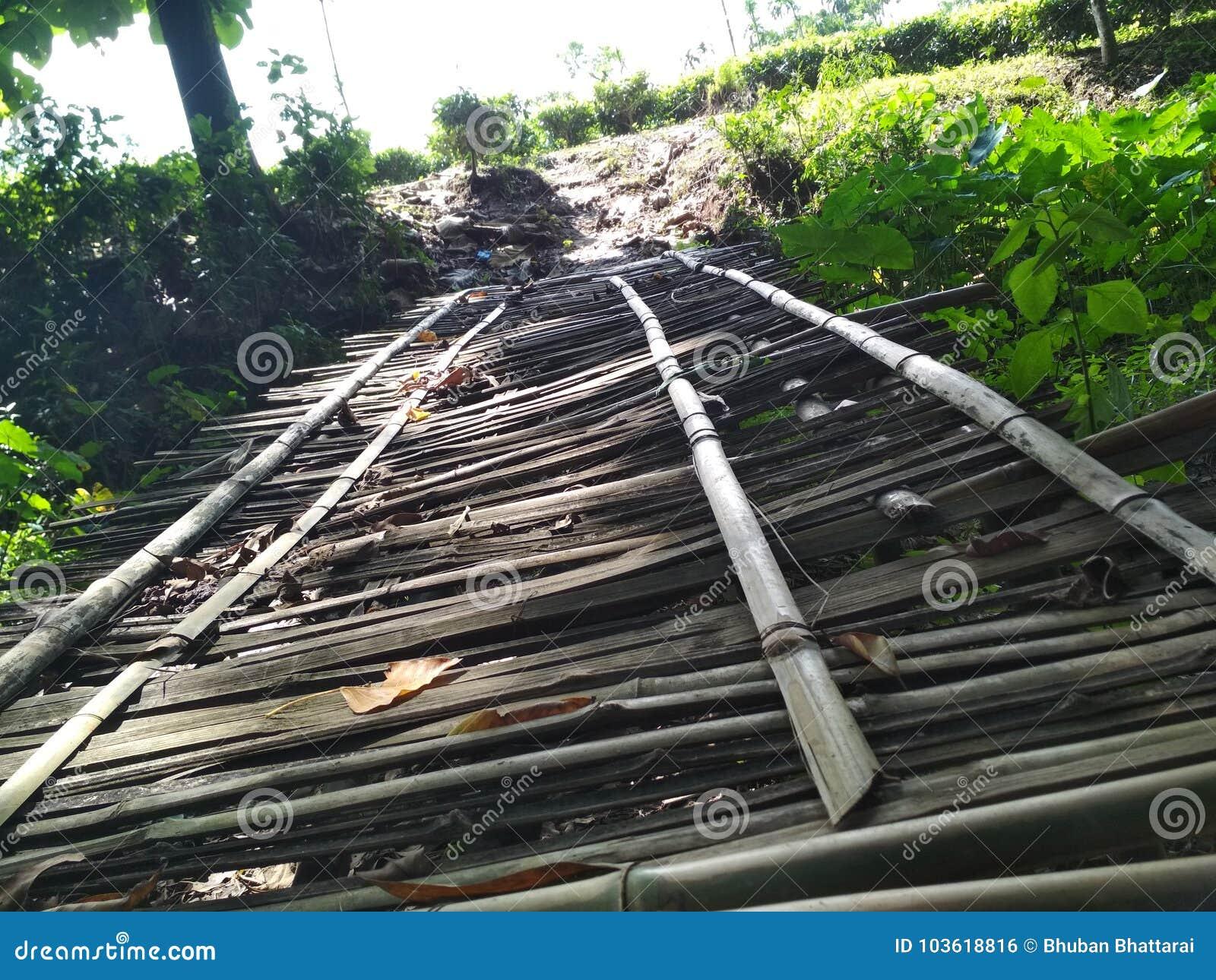 Bambusowy bridg