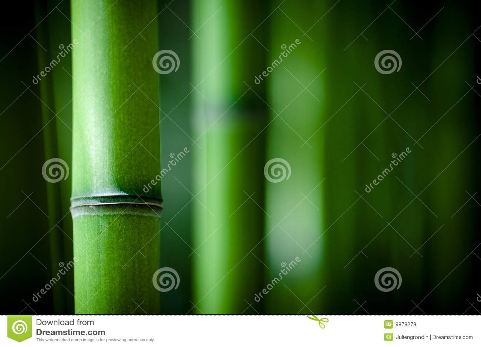 Bambusowy zen