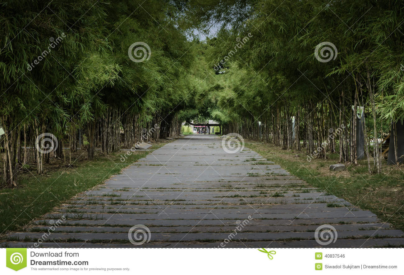 Bambuväg