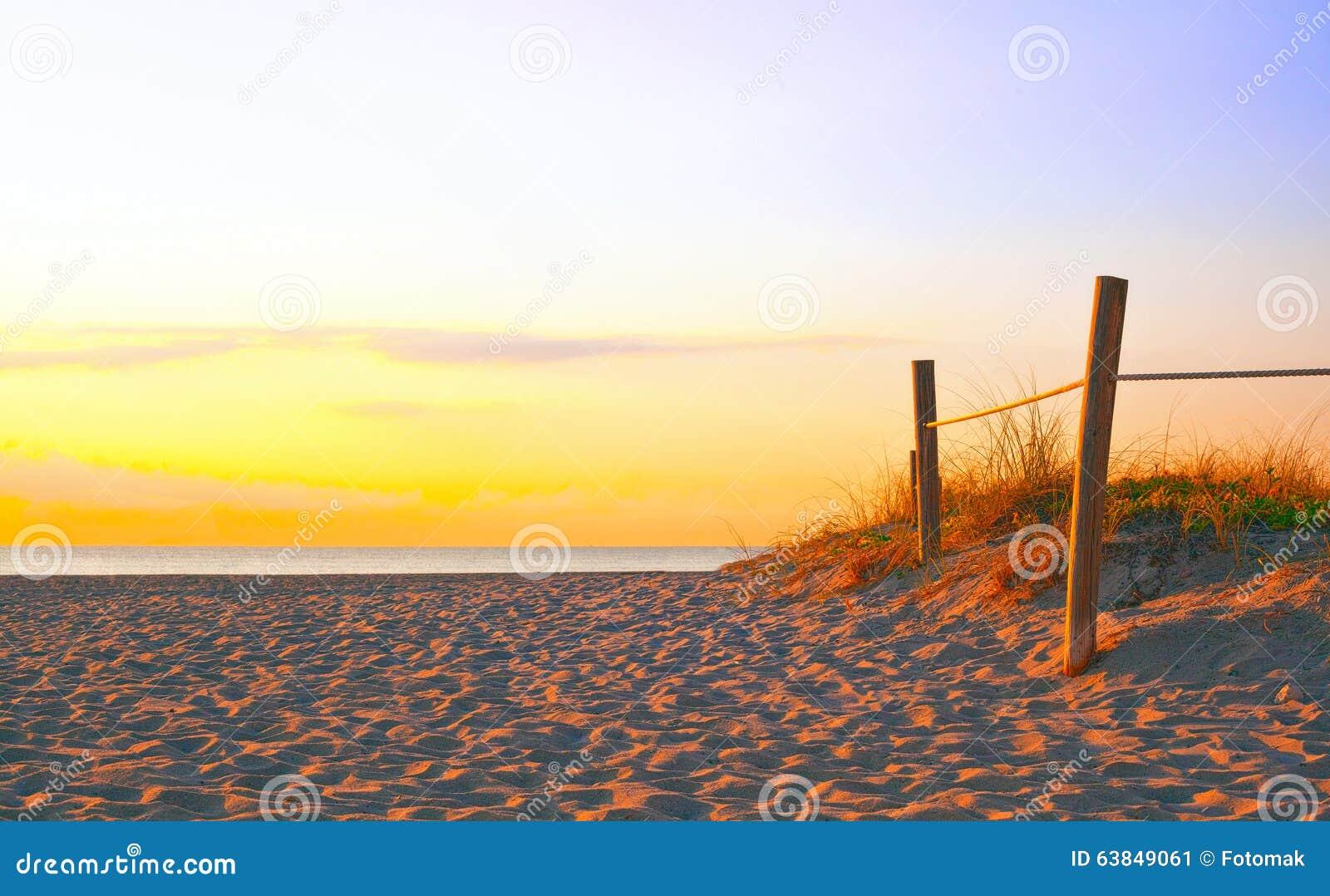 Bana på sanden som går till havet i Miami Beach