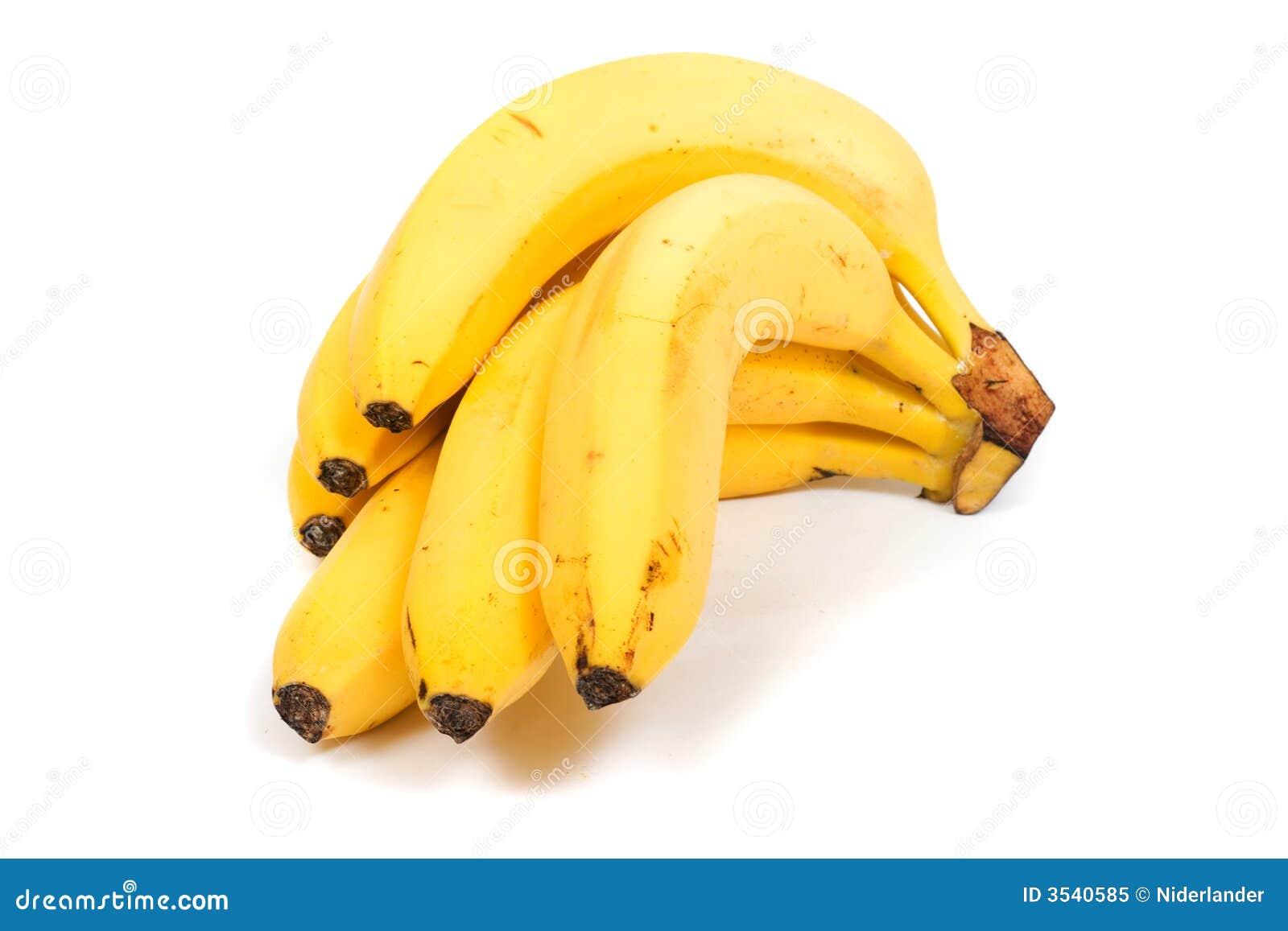 Banan musa