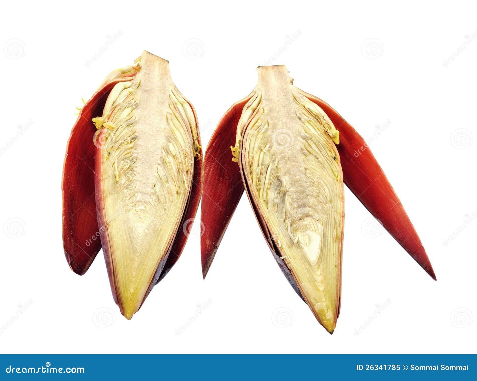 Banana Blossom Royalty Free Stock Image