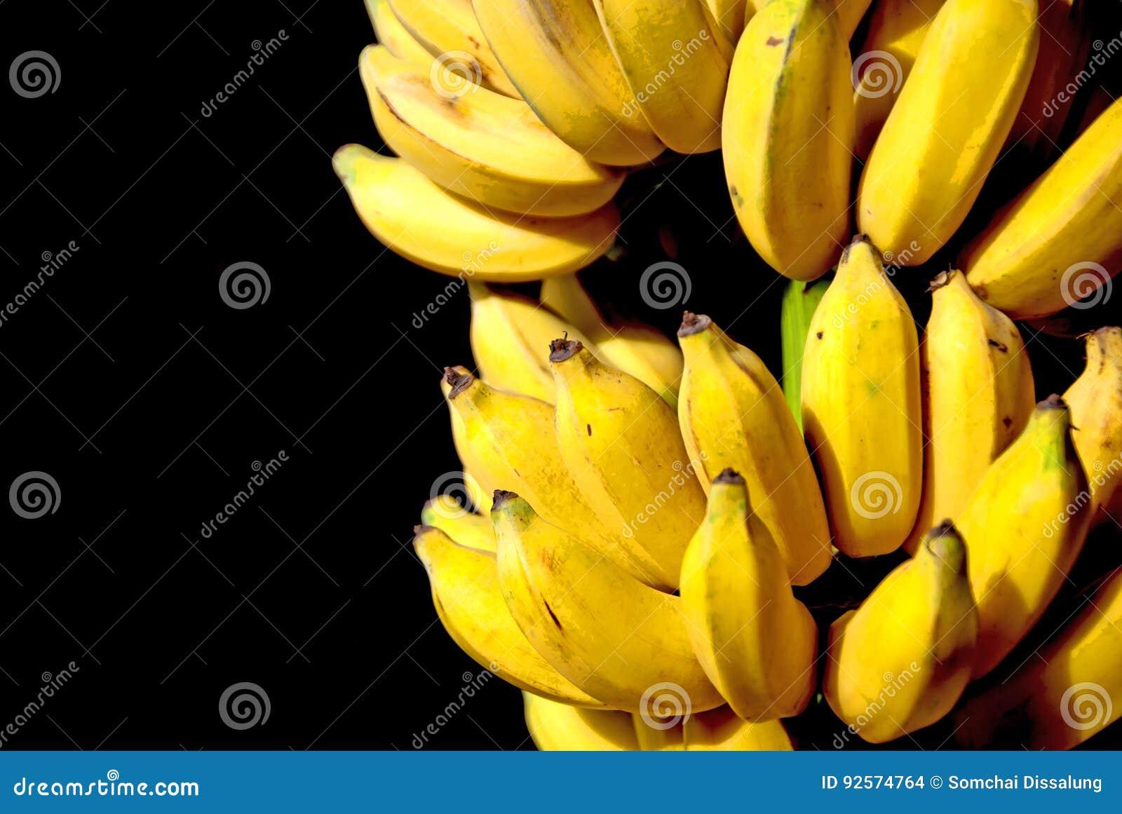 Banana coltivata in Tailandia