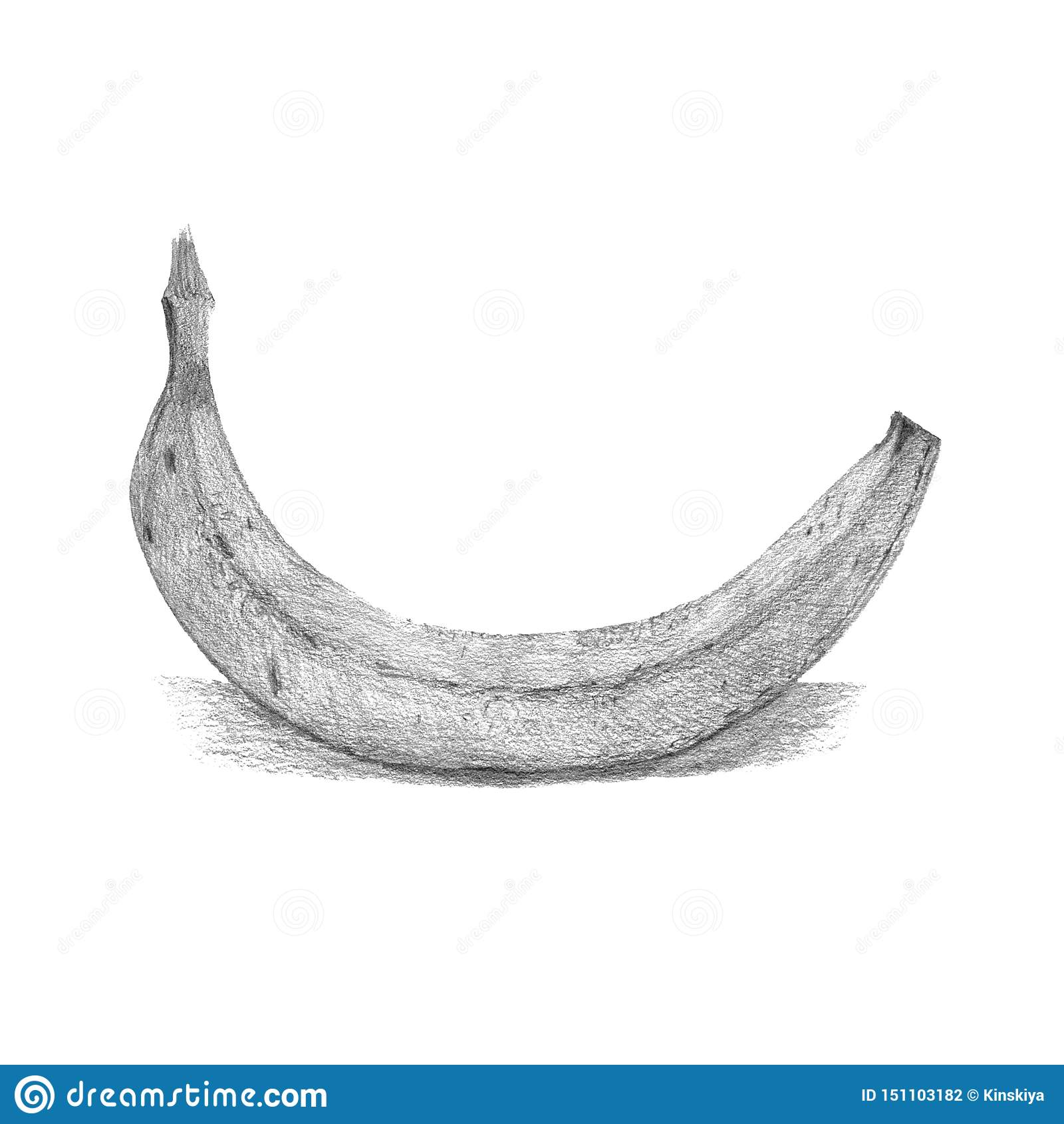 Banana Fruit Drawing Pencil Food Illustration Hand Drawn Stock Illustration Illustration Of Natural Diet 151103182