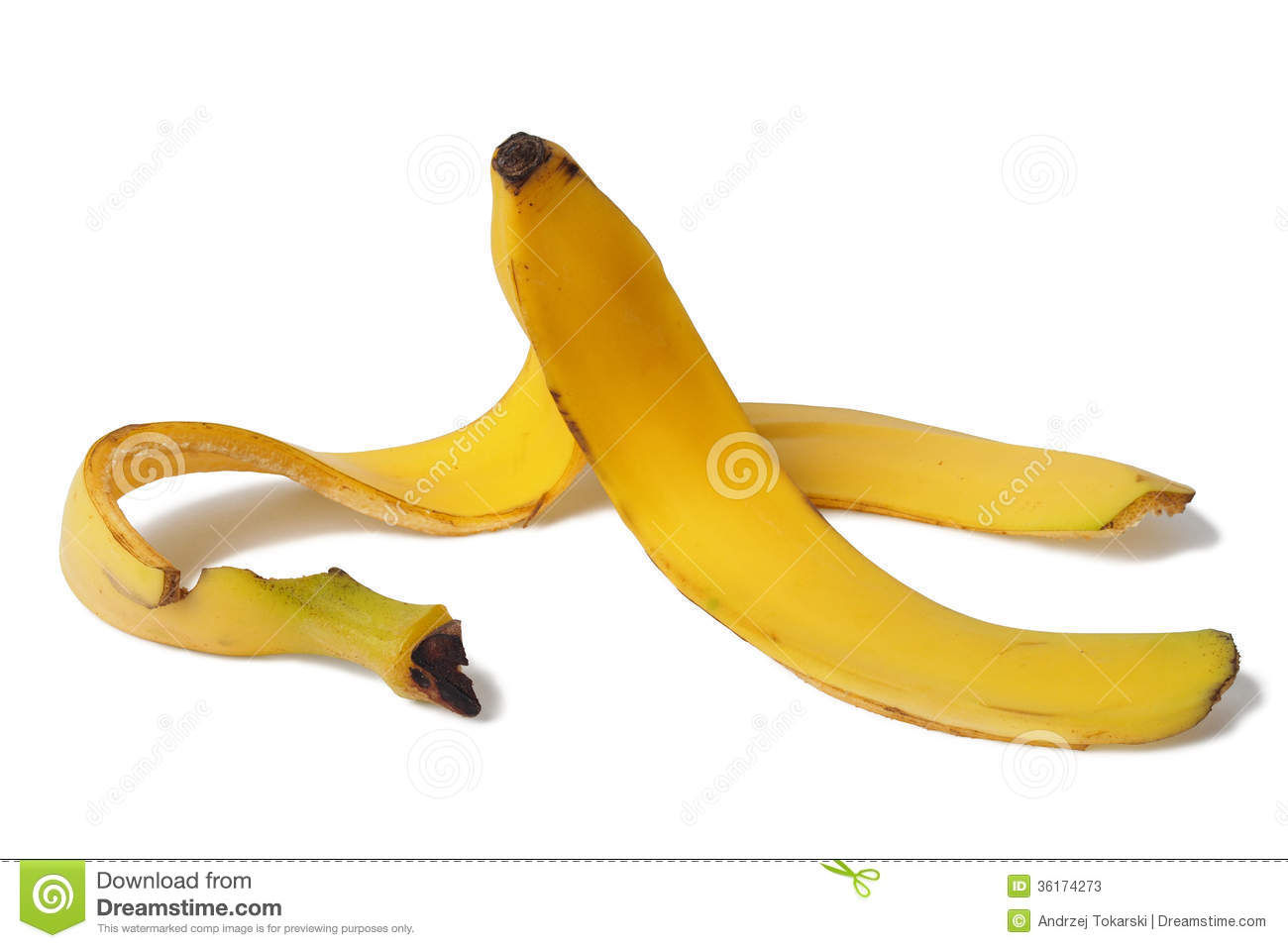 Displaying 20> Images For - Banana Peel Clipart...