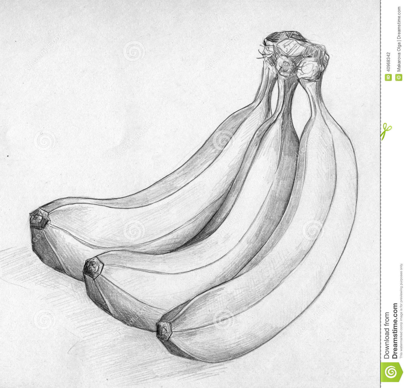 Banana Sketch Stock Illustration Image 40968342
