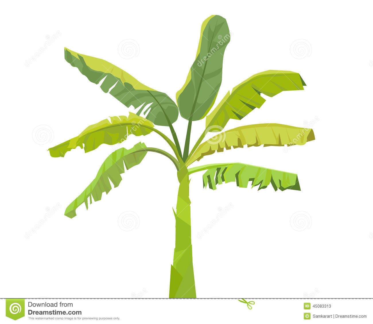 Banana Tree Stock Illustrations 21 624 Banana Tree Stock Illustrations Vectors Clipart Dreamstime
