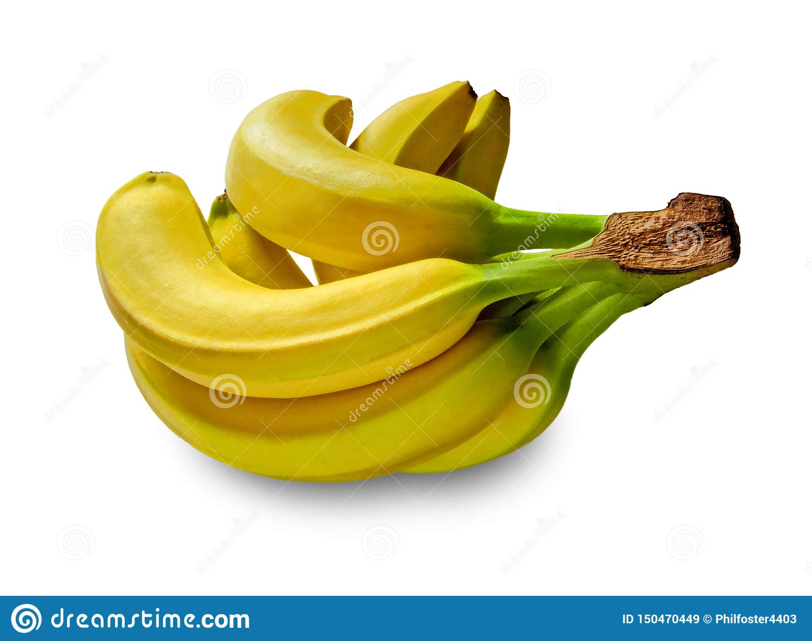Bananas no estúdio