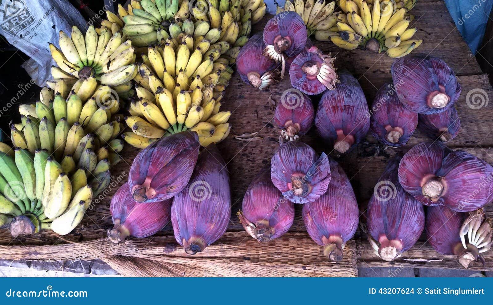 Download Bananblomning arkivfoto. Bild av yellow, frukt, tropiskt - 43207624