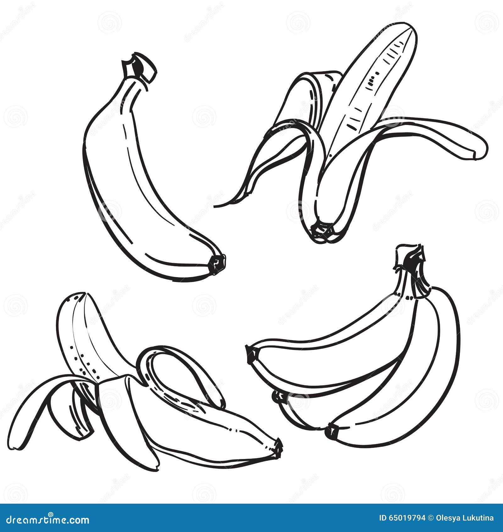 One Line Body Art : Banane dessin au trait des bananes sur un fond blanc une