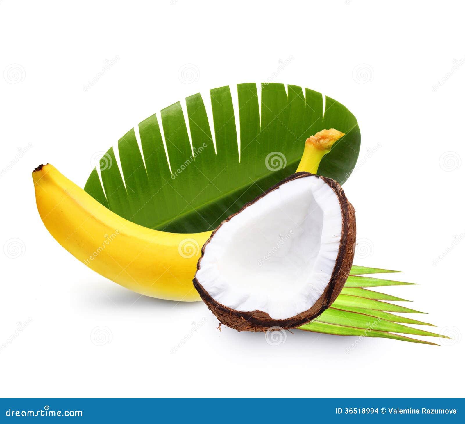 Banane mûre et noix de coco d isolement
