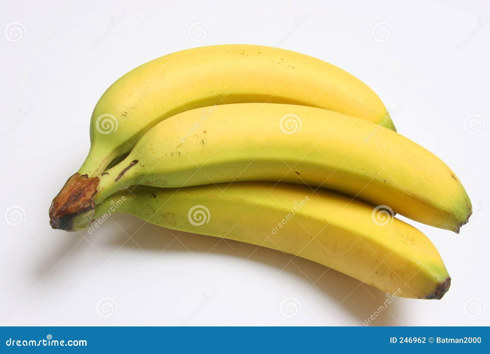 Bananer ms01