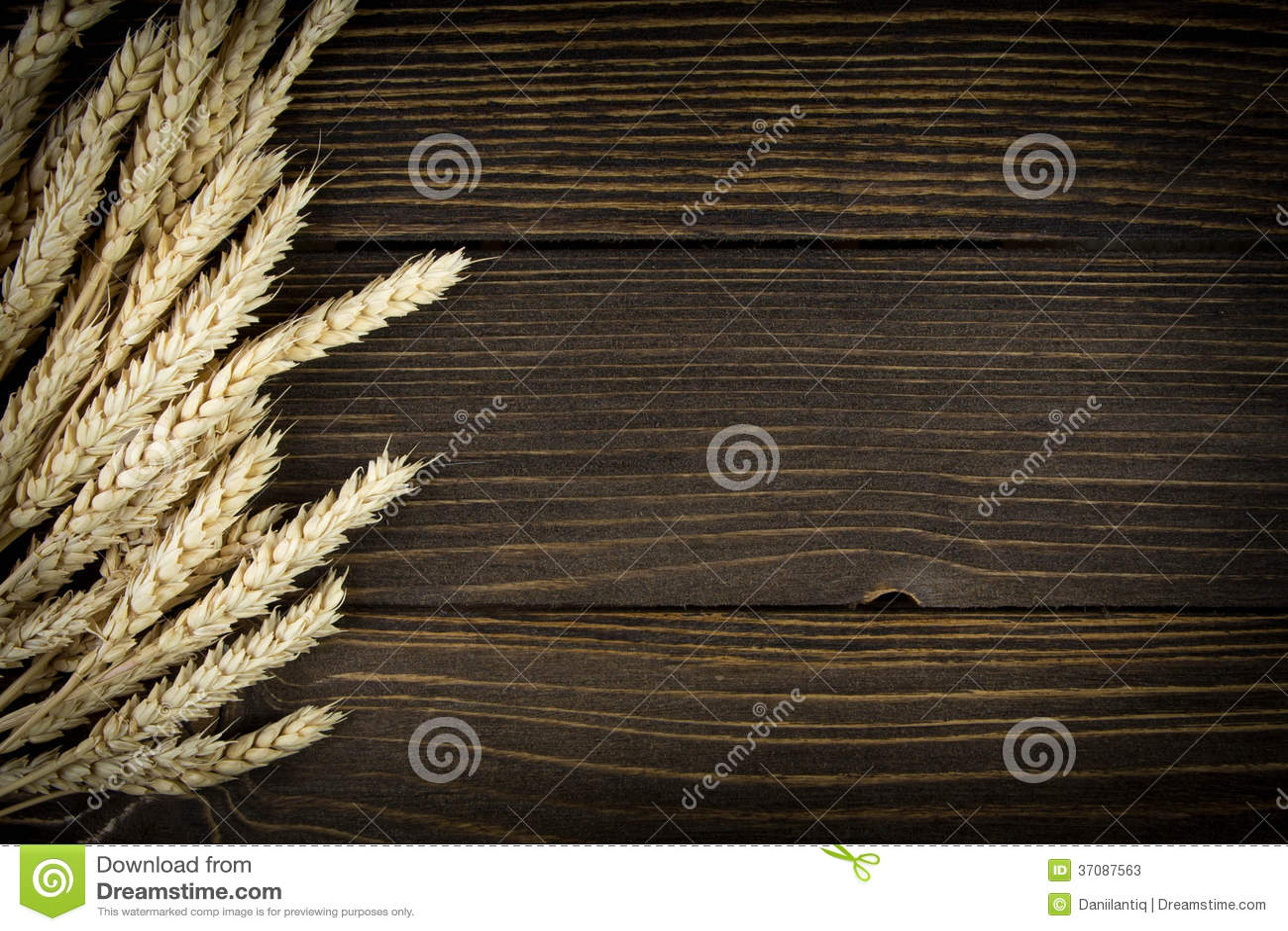 Download Banatka odizolowywająca obraz stock. Obraz złożonej z złoto - 37087563