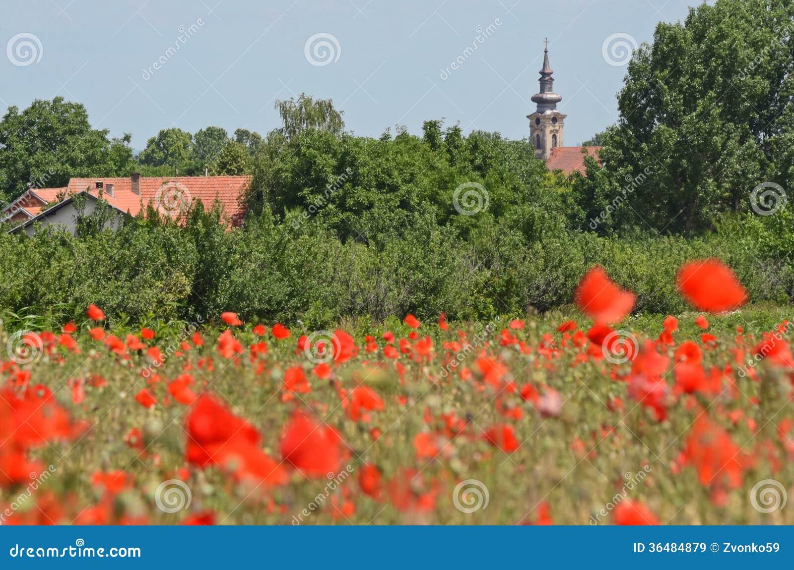 Banatski Karlovac stock image. Image of desktop karlovcani - 36484879