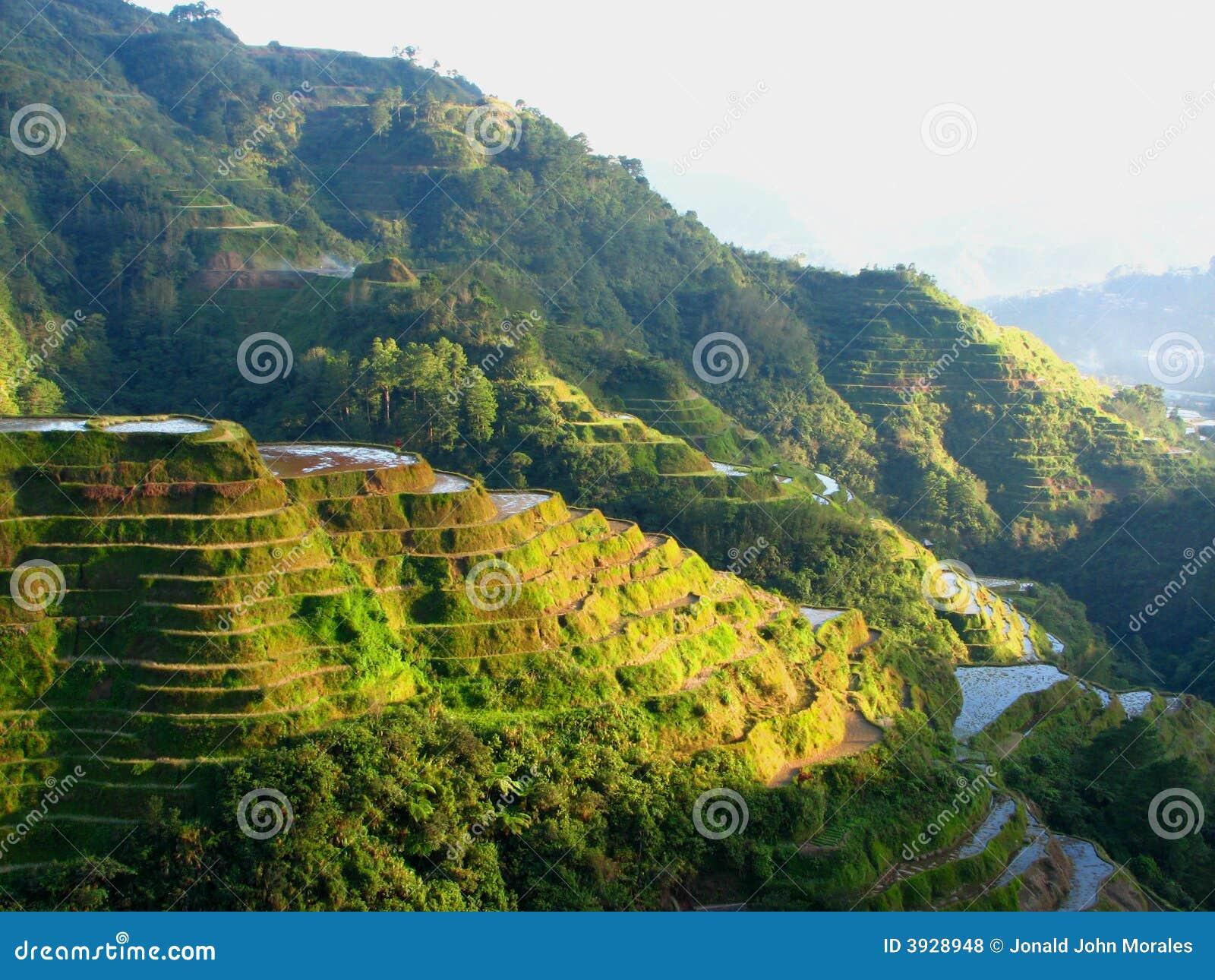 Banaue Reis-Terrassen