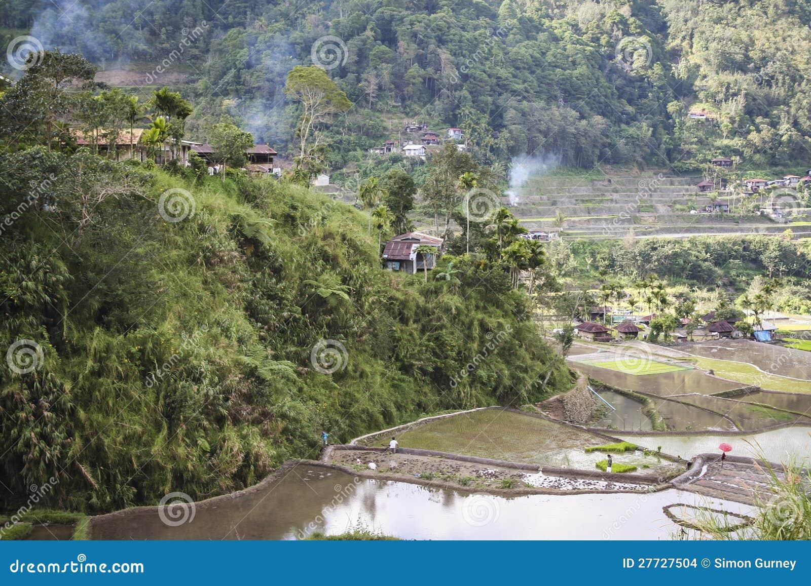 Banaue Reisterrassen Luzon Philippinen
