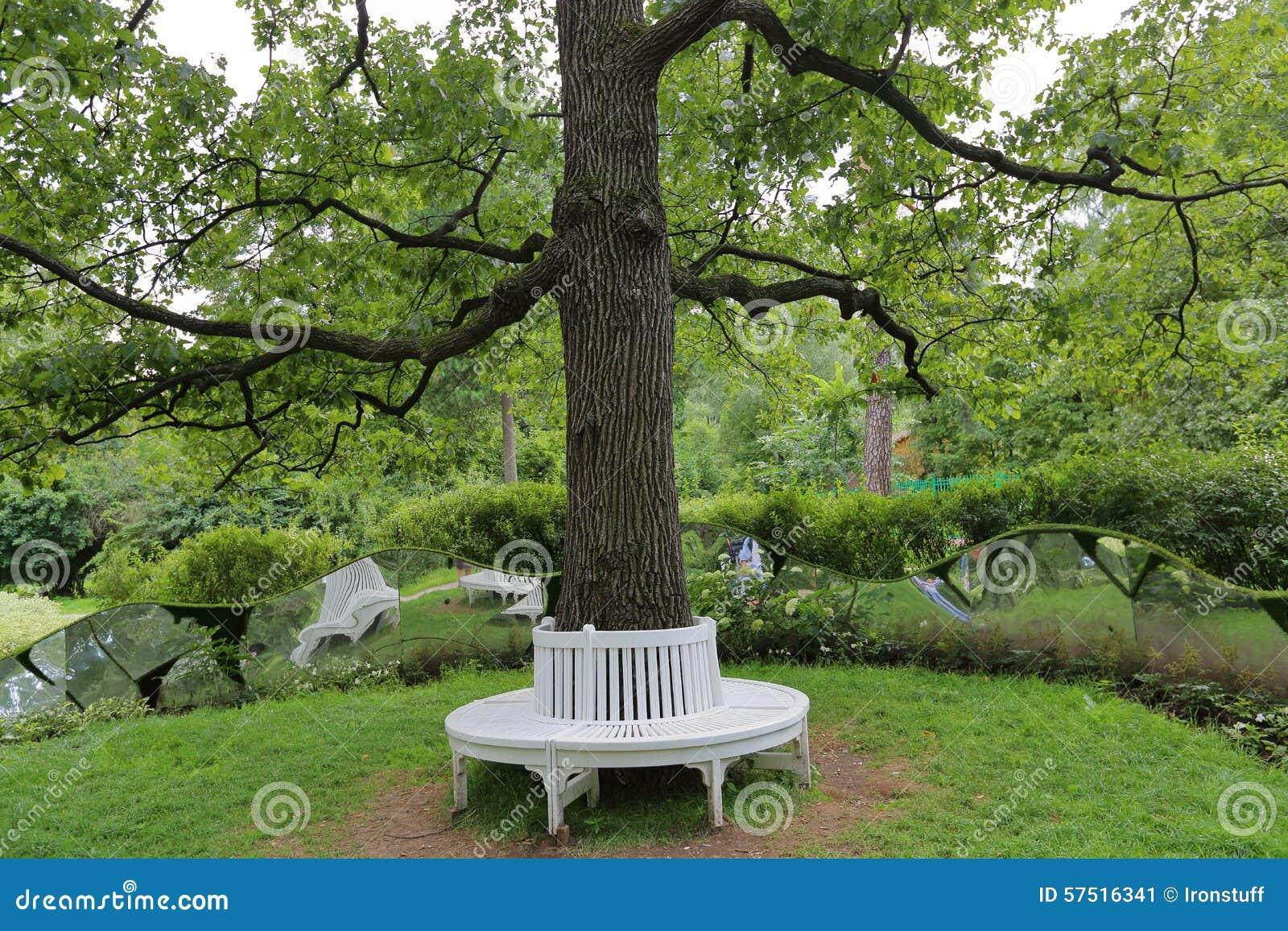 Banc autour d 39 arbre photo stock image 57516341 for Bordure autour d un arbre