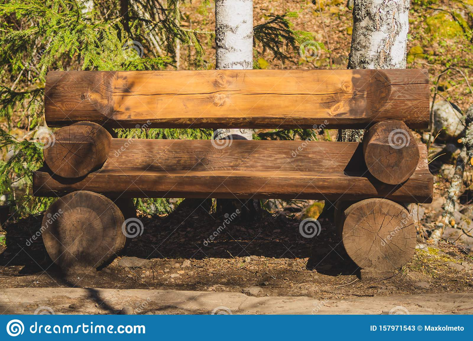 Banc De Bois Rond Dans La Forêt Image stock Image du bois