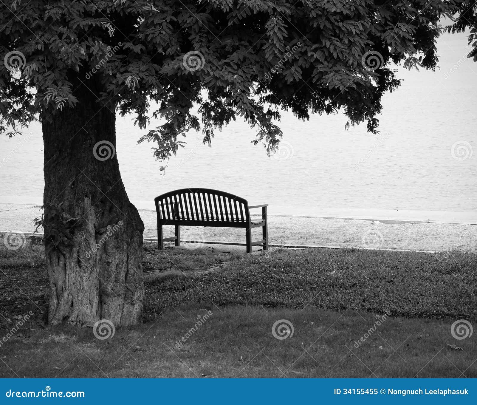 banc de parc isol en noir et blanc photo libre de droits image 34155455. Black Bedroom Furniture Sets. Home Design Ideas